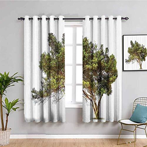 Decoración para sala de estar con sombras, diseño de árbol antiguo con ramas anchas, marco de jardín para sala de estar o dormitorio, verde y marrón