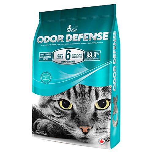 Best clay cat litter 40lb for 2021