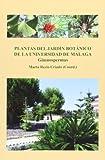 Plantas del Jardín Botánico de la Universidad de Málaga: Gimnospermas: 4 (Conocer Málaga)