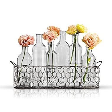 Bud Flower Vases In Chicken Wire Basket for Window-Sill Display, Decorative Storage, Party or Wedding Centerpiece - Clear Glass 6-piece Assorted Home Decor Set