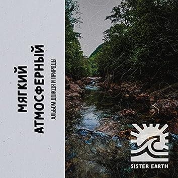 Мягкий Атмосферный Альбом Дождя и Природы