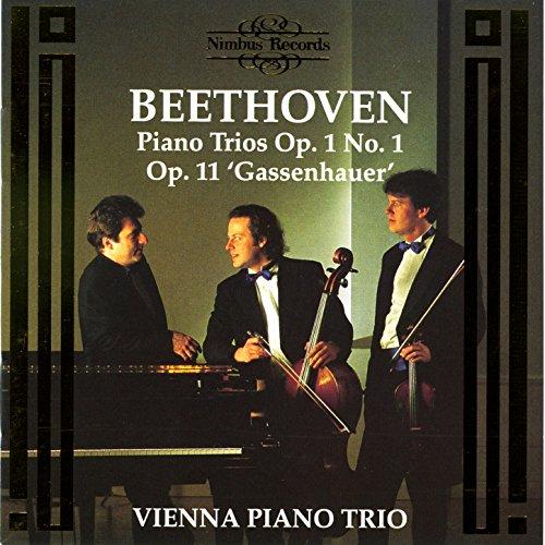 Piano Trio In B-Flat Major, Op. 11 'Gassenhauer': III. Tema 'Pria ch'io l'impregno' - Allegretto