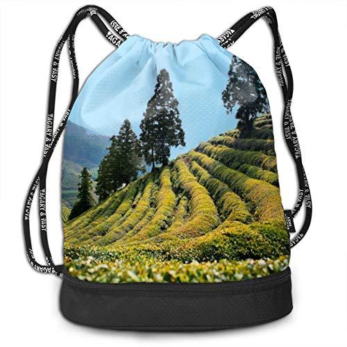 Paquete de mochila con cordón para árbol, mochila portátil, para ocio, deporte, gimnasio, viajes, 15 x 16 pulgadas