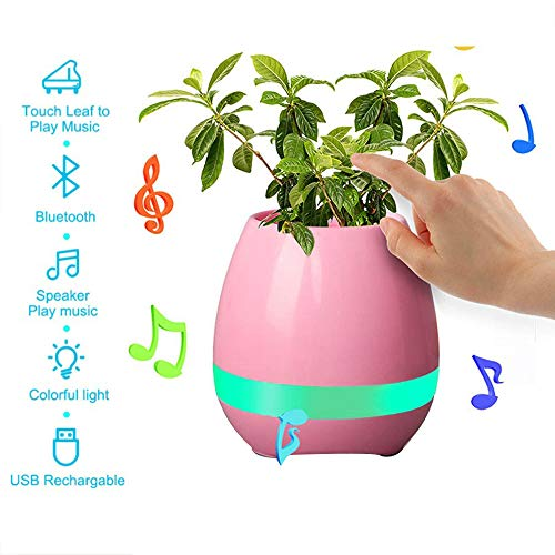 B&H-ERX muzikale tafellamp Smart vazen bloemen Bluetooth luidspreker oplaadbaar waterdicht Smart Touch Pianta Piano Musicale lamp (Senza installaties)