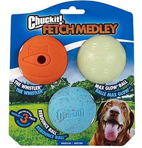 Chuckit Fetch Medley Asst Balle pour Chien Couleur Aléatoire Taille M 3 Pièces