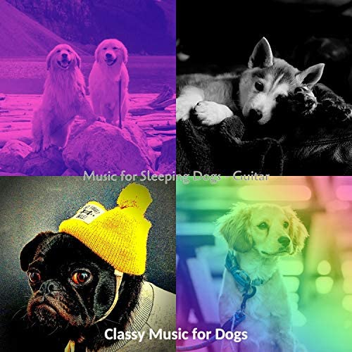 Classy Music for Dogs