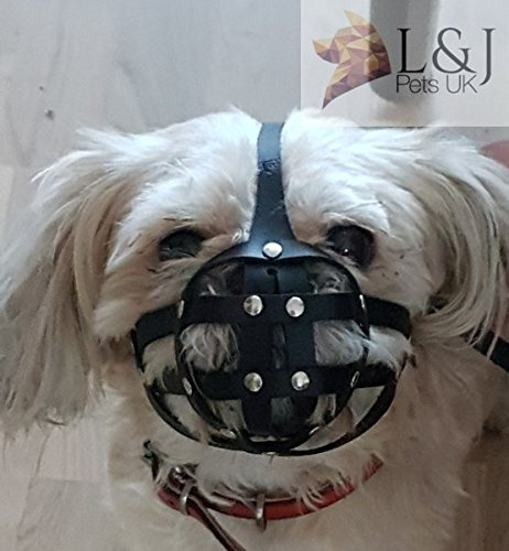 Leather Dog Muzzle for Shih Tzu and Pug Other Flat face Short Snout Dog's (M2, Black)
