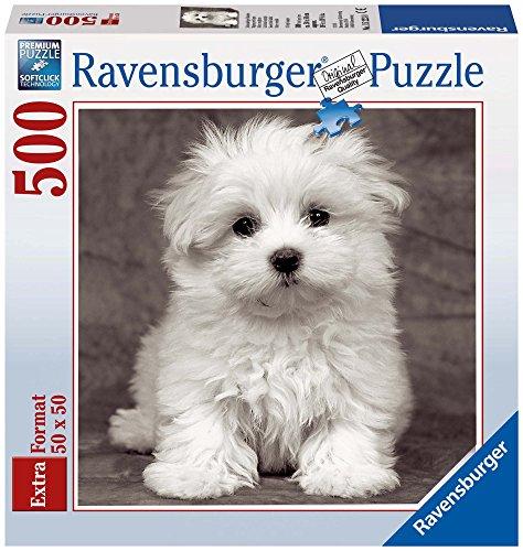 Cuadrado: Cachorro maltés, Puzzle de 500 Piezas (15221 6)