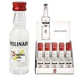 Molinari sambuca mignon cc.30 confezione da 25 pezzi (1000042056)...