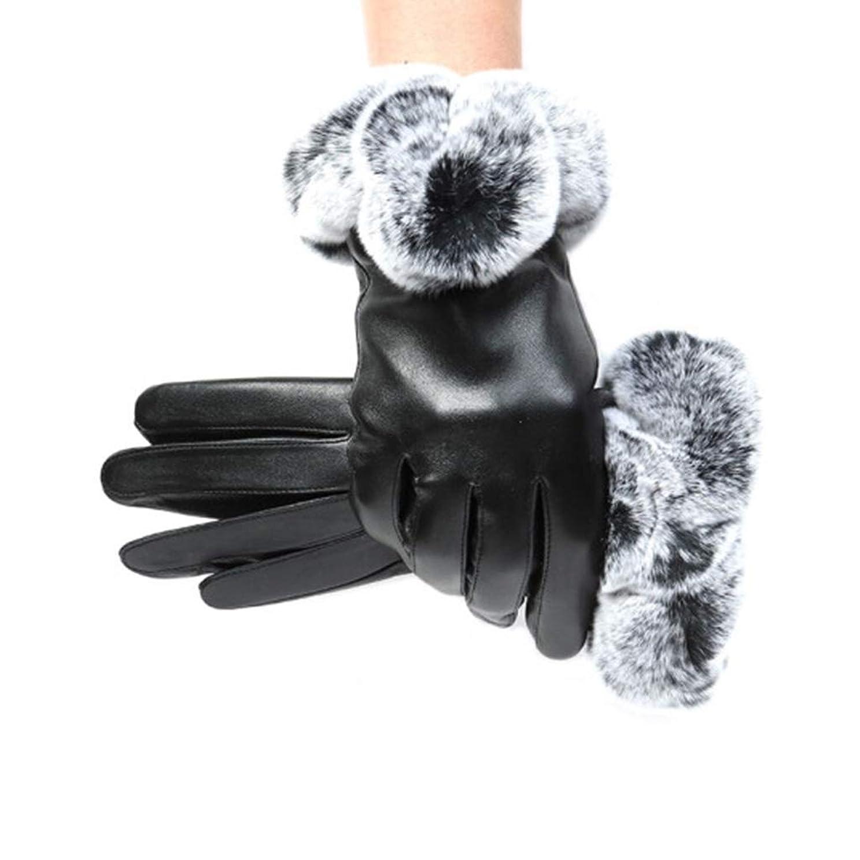 十二遊びます白鳥レザーグローブ冬の暖かい手袋レディースアウトドアライディンググローブ防風コールドプラスベルベットのタッチスクリーングローブ女性モデル