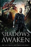 Shadows Awaken, The Last Dragon Chronicles, Book 3