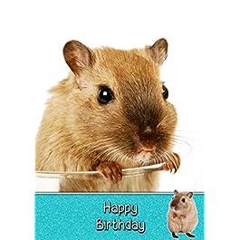 Gerbil Birthday Card