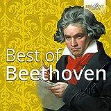 Violin Sonata No. 5 in F Major, Op. 24: I....