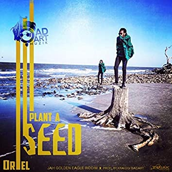 KraiGGi BaDArT presents: Plant A Seed (feat. ORieL) - Single