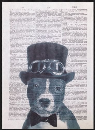 Vintage Dog Staffy Print 1933 Dictionary Page Wall Art Picture Hipster Steampunk by Parksmoonprints