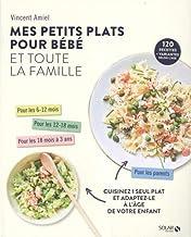 Livres Mes petits plats pour bébé et toute la famille PDF