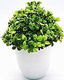 Plantas artificiales en macetas, plantas pequeñas Abillyn de plástico falsas en macetas para decoración del hogar, interiores y exteriores, baño, oficina (trébol)