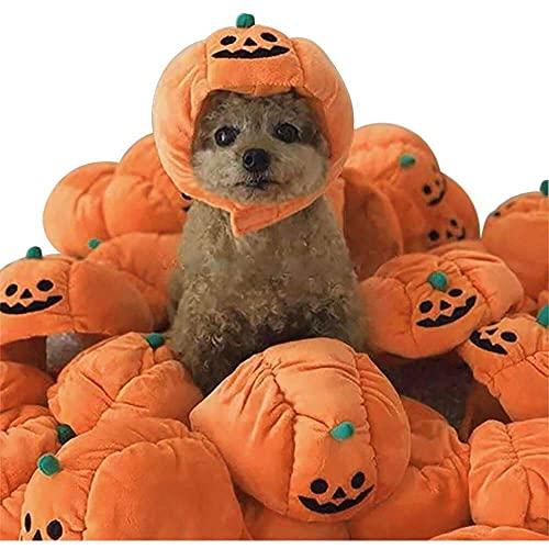 jiabushu shop Sombrero de calabaza para mascotas de Halloween para perro, gato, divertido sombrero de calabaza ajustable, disfraz de Halloween para cachorros de perro, perro y gato, gorro de peluche