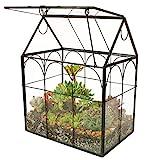 ElegantLife Succulent Terrarium,House Shape Handmade Succulent Pot  With Top Swing Lid Planter Case For Fern Moss, Cacti, Air Plants (No Plant Included)