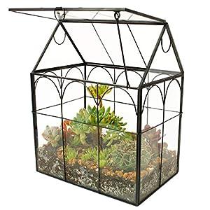 elegantlife glass geometric plant terrariumsucculent air planter for home garden office decoration