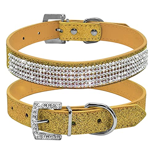 Collar de Perro de Cristal de 1 Pieza, Collares de Diamantes de imitación para Perros y Gatos, Collar Brillante para Mascotas Ajustable para Perros pequeños medianos, Dorado, M