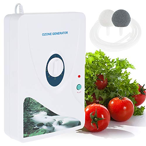 WM Generador de Ozono 220V 600MG / H,Portátil Purificador de Aire para Hogar Gesterilizador para Agua/Verduras/ Frutas,Multipropósito Ozonizador Esterilizador De La Máquina