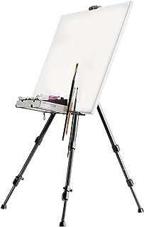 Walimex pro Aluminium Atelierstaffelei L 165 cm - Staffelei mit grossem Einsatzbereich, für Leinwand bis 122cm Höhe und 4cm Tiefe, nur 1,06kg, Halterung für Farben, Pinsel, Tücher, inkl. Tasche