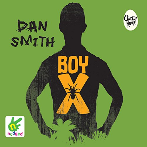 Boy X audiobook cover art