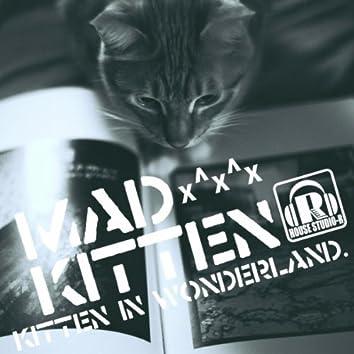 Kitten In Wonderland x^x^x
