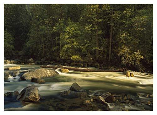 Obras de Arte Italia Río Merced que fluye por el suelo del valle, Parque Nacional de Yosemite, California-Papel Art-42'x32'
