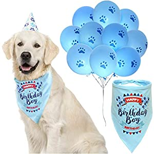 Dog Birthday Boy Bandana with Paw Print Party Cone Hat and 10 Balloons – Great Dog Birthday Outfit and Decoration Set – Perfect Dog or Puppy Birthday Gift