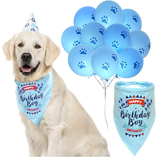 ZOOniq Dog Birthday Boy Bandana with Paw Print Party Cone Hat and 10 Balloons - Great Dog Birthday Outfit and Decoration Set - Perfect Dog or Puppy Birthday Gift