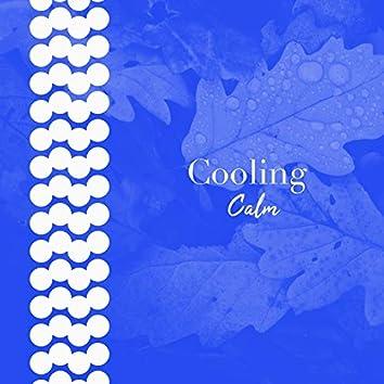# 1 Album: Cooling Calm