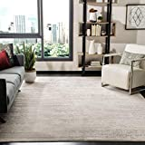 Safavieh Adirondack Collection ADR113B Modern Ombre Non-Shedding Stain Resistant Living Room Bedroom Area Rug, 9' x 12', Ivory / Silver