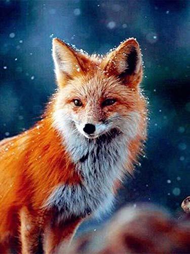 MOL Snow Fox 5D Diamond Painting 45x60cm/18x24in