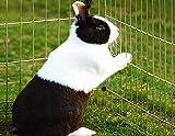 Kaninchenstall Hasenkäfig Hasengehege Hasenstall Käfig Freilauf Gehege Metall mit blauem Sonnenschutz - 2