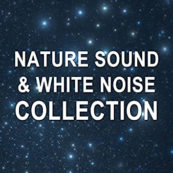 2018 A Nature Sound & White Noise Collection