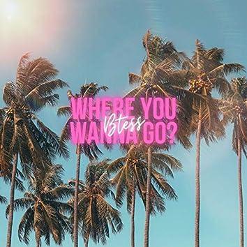 Where You Wanna Go?