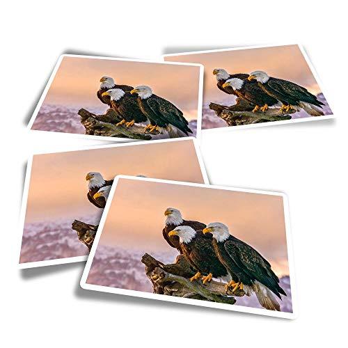 Pegatinas rectangulares de vinilo (juego de 4) – American Bald Eagles – Calcomanías divertidas para ordenadores portátiles, tabletas, equipaje, reserva de chatarra, frigoríficos #44082