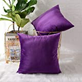 MERNETTE Pack of 2, Velvet Soft Decorative Square Throw Pillow Cover Cushion Covers Pillow case, Home Decor Decorations for Sofa Couch Bed Chair 18x18 Inch/45x45 cm (Dark Purple)