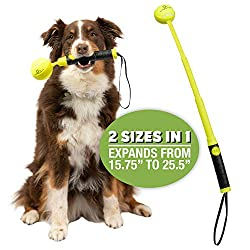 Best Launcher for Tennis Balls if You Have Small Hands