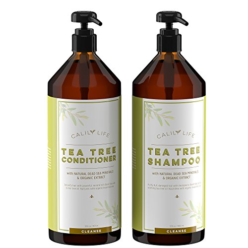 Calily Life Organic Tea Tree Shampoo + Conditioner with Dead Sea Minerals, Duo Set, 33.8 Oz. Each - Concentrated Extra-strength Formula - Removes Impurities, Refreshes, Softens and Invigorates