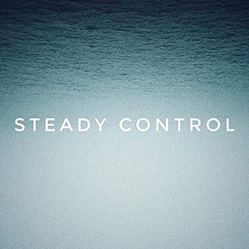 Steady Control (feat. Flexx & Labjaxx)