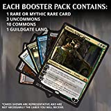 Immagine 2 magic the gathering guilds of