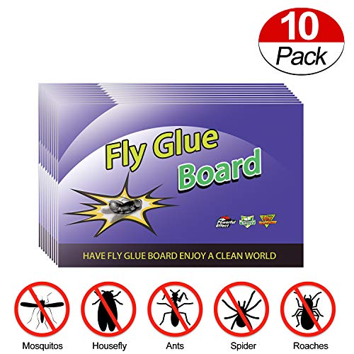 Fly Trap,Fly Traps for Indoor/Outdoor Use,Fly Paper,Gnat...