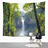Y·JIANG Landscape Tapestry, San Rafael Falls The Largest Waterfall in Ecuador Home Dorm Decorative Large Tapestries, Wide Wall Hanging Blanket for Living Room Bedroom, 60 x 50 inches