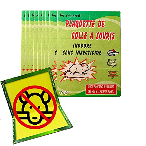 Present | 9 placas ultra adhesivas para ratones y ratas, trampa de...