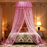 Topyuan Princess Mosquito Net for Bed, 4 Colors LED Sting Lights Canopy Bed Curtain Netting for Baby, Kids, Girls Or Adults. 1 Entry,for Single to King Size Beds