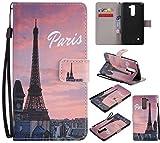 Nancen Compatible with LG G Stylo 2 / LG Stylus 2 / LG Stylus 2 Plus LS775 K520 (5,7 Zoll) Hülle/Handyhülle, Zwei Kartenfächer & Eine Brieftasche Etui [Paris]