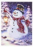 Oak Street Snowman Holding Lantern with Cardinal Winter LED Art 8'x6' Tabletop Canvas Light up Picture 6 Hour Timer